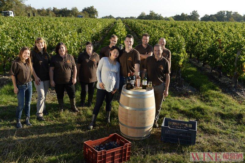 葡萄酒二次发酵秘密在于乳酸菌