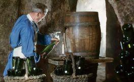 酿酒葡萄的品质监控 优质葡萄酒的酿造