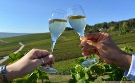 德国葡萄酒产区 在莫塞尔享受葡萄酒假期