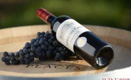中国葡萄酒文化 葡萄酒在中国的发展道路