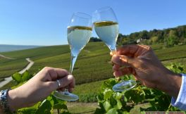 葡萄酒节日汇集 葡萄酒爱的春日狂欢