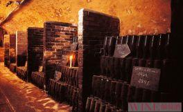 盘点全球十大顶级酒窖