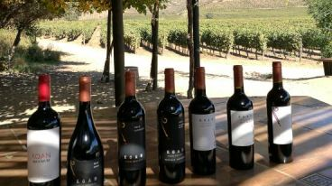 智利葡萄酒品質之選,會眾商貿進口葡萄酒招商加盟