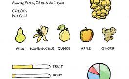 全面了解白诗南这个葡萄品种!