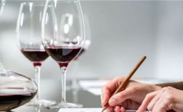 所有你需要知道的品酒知识的完整品酒指南