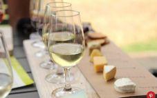 美国新墨西哥阿尔伯克基的葡萄酒酒庄和品酒室