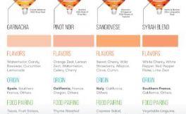 四种桃红葡萄酒品种