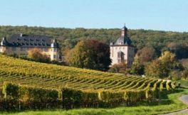 关于德国葡萄酒历史的惊人事实