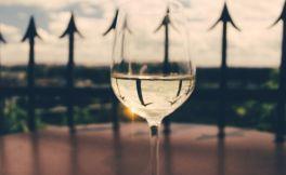 挑选加州最好的霞多丽葡萄酒指南