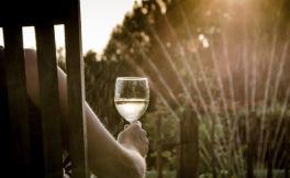 关于葡萄酒你不知道的9件事