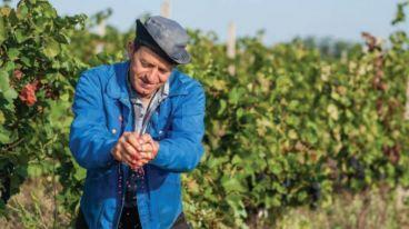 堡尔酒庄来自摩尔多瓦得天独厚的葡萄酒酿造产区