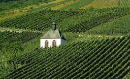 智利葡萄酒历史指南 智利葡萄酒发展史