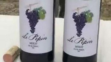 富羽君踏在法国加尔桥下,为您带来南法新酒推荐!