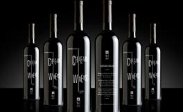 10款智利葡萄酒的点评