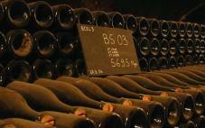 英国精品葡萄酒商Bi的销售业绩连续5年保持增长势头