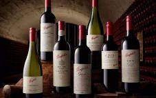 澳洲奔富红酒好喝吗?奔富红酒哪个好喝