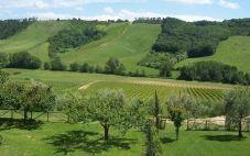 意大利葡萄酒:翁布里亚葡萄酒产区