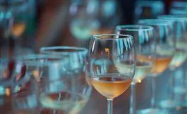 如何判断葡萄酒什么时候喝比较理想?