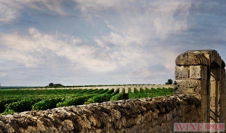 勃艮第葡萄酒:风云变幻两千年