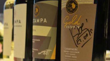 2019年【空查瓜谷最好的酒庄】智利天宝庄园首次巡回活动