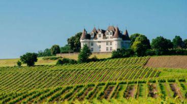 法国彩色阿基坦大酒窖,致力于酿酒合作社的葡萄酒销售和推广