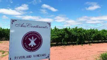 澳洲大陆酒业集团——追求卓越品质 缔造世界品牌 亮相6.3-5 Interwine