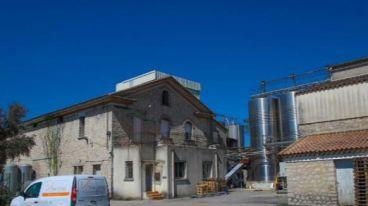 大地莊園 | Val des Pins 松谷莊探索朗格多克葡萄酒產區的魅力