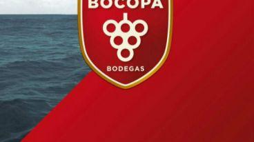 酒足迹 | 博科帕酒庄