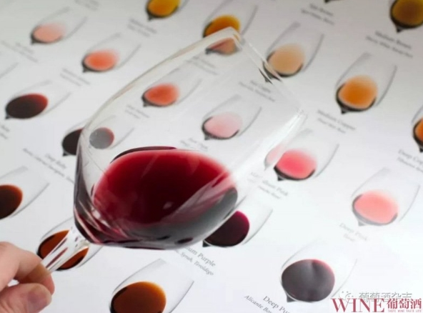每一款葡萄酒,都有属于它的秘密