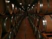 新手指南——葡萄酒期货和期酒