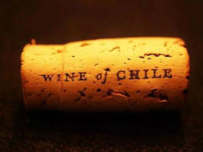 德斯汀安IWEC · 珠海大师班| 智利酿酒先锋-传统与创新之结合