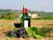 """如何理解葡萄酒中的""""矿物性"""""""