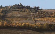四月份意大利葡萄酒之旅的建议?
