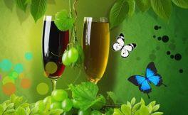 关于葡萄酒的分类(酿造工艺)