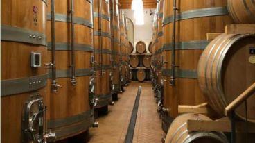 期盼已久的兰第尼酒庄酒终于到了,名庄出产,价格优惠,关键还好喝