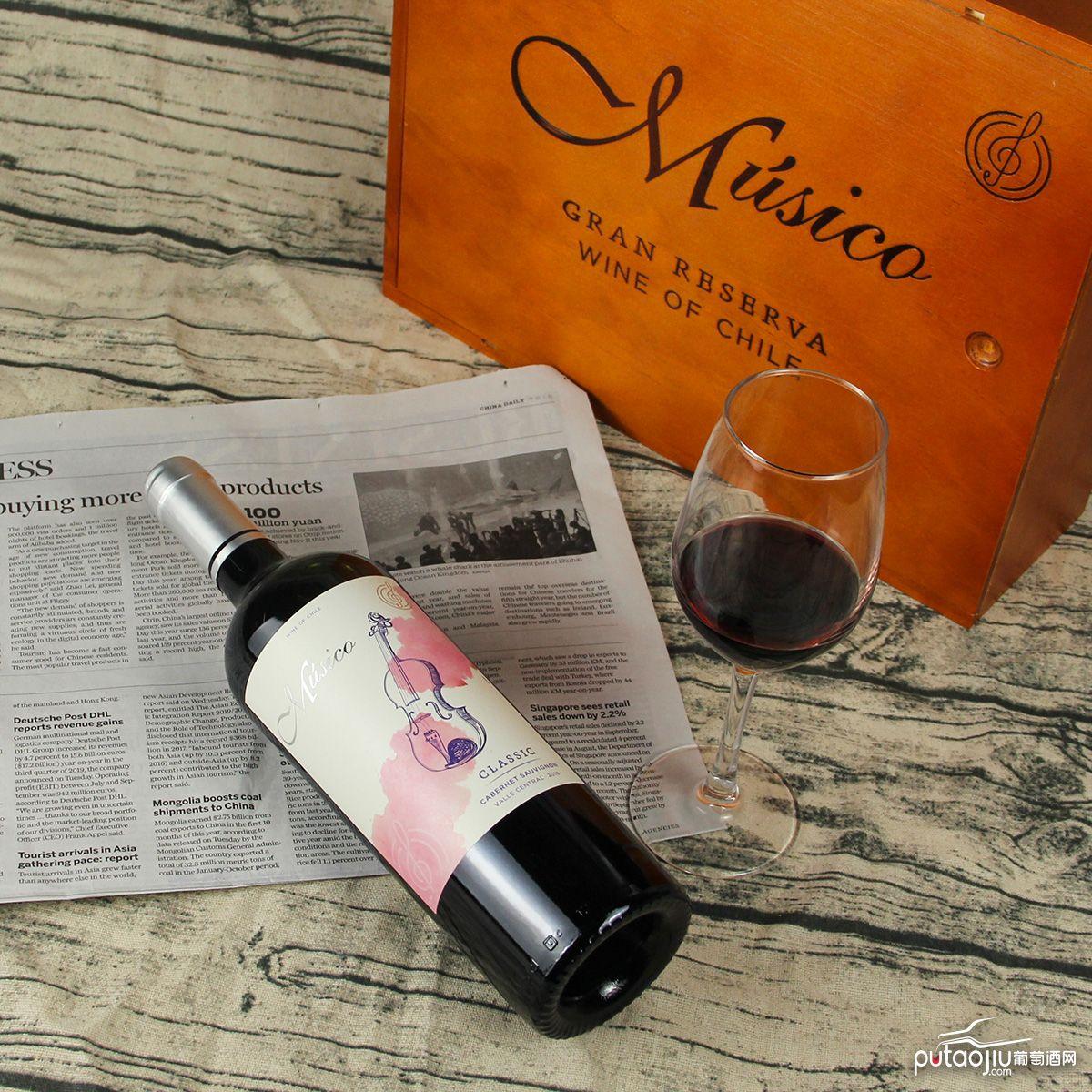 智利中央山谷Musico酒庄音乐家小提琴赤霞珠红葡萄酒红酒