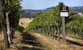 意大利翁布里亚葡萄酒产区风土指南