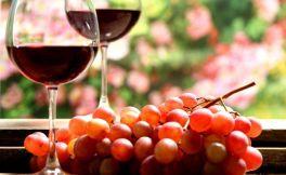 戎子酒庄出产的戎子鲜酒你知多少呢?