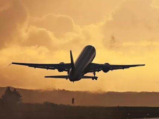 多個航班取消,大部分進口商無法參加Vinexpo展會
