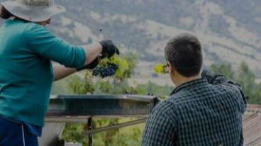 空查瓜谷,堪称智利葡萄酒的美梦园|厘米贸易