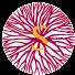 森脉(深圳)国际贸易有限公司