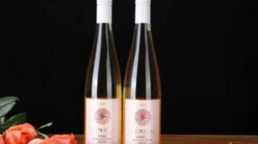 加长版三伏天杀到,「续命」葡萄酒让你凉爽一夏|森脉葡萄酒