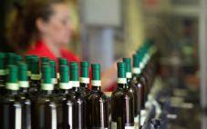 意大利计划削减葡萄酒产量,从而提高价格