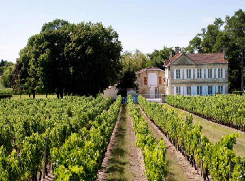 白塔酒庄Chateau La Tour Blanche
