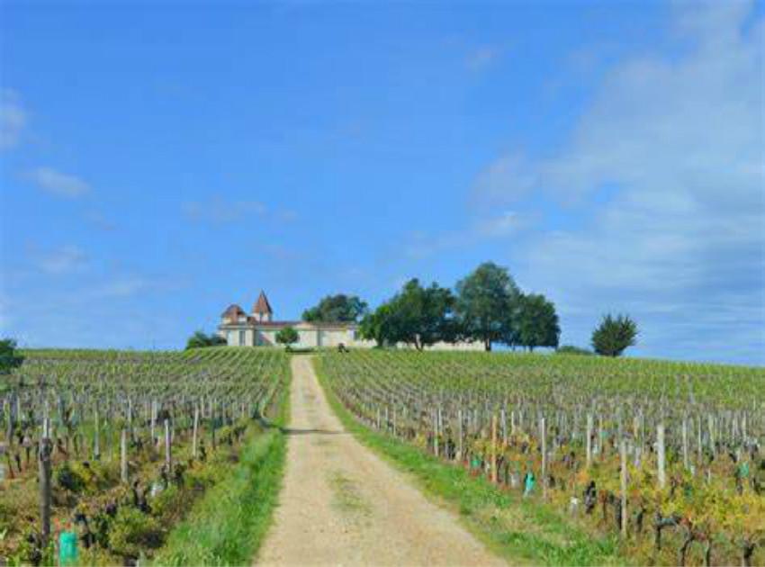 哈宝普诺酒庄Chateau Rabaud-Promis