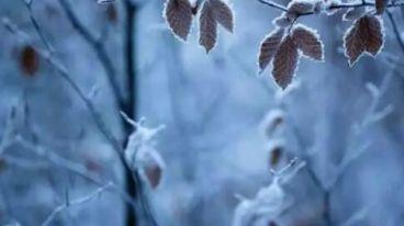 霜降 · 饮一杯葡萄美酒,温暖您的心和胃