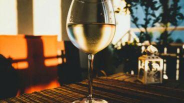 西班牙的白葡萄酒,是如何一步步吸引世界葡萄酒市场的目光 | 卢埃达产区