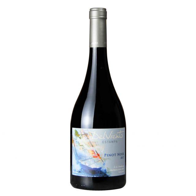 智利空加瓜谷伊斯坦帕酒庄乘风破浪黑皮诺干红葡萄酒红酒