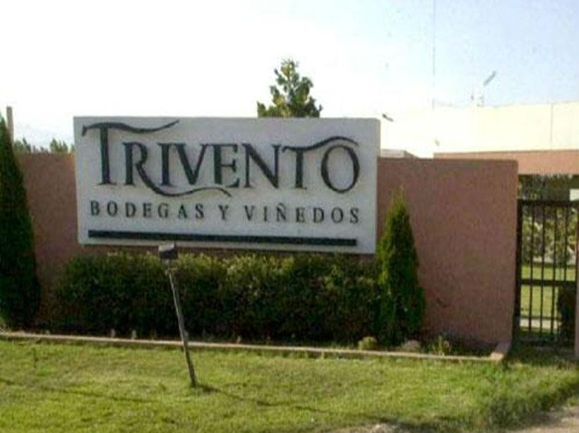 风之语酒庄Trivento