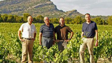 西班牙东南部耶克拉产区的象征——卡斯塔诺酒庄